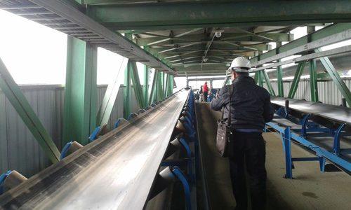 mua băng tải cao su giá rẻ tại Cà Mau